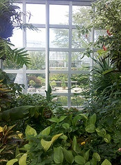 Conservatories in Culceth